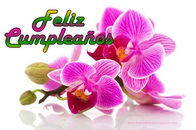 Feliz cumpleanos de orquideas