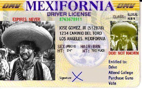 California Mexico Drivers License Mexifornia