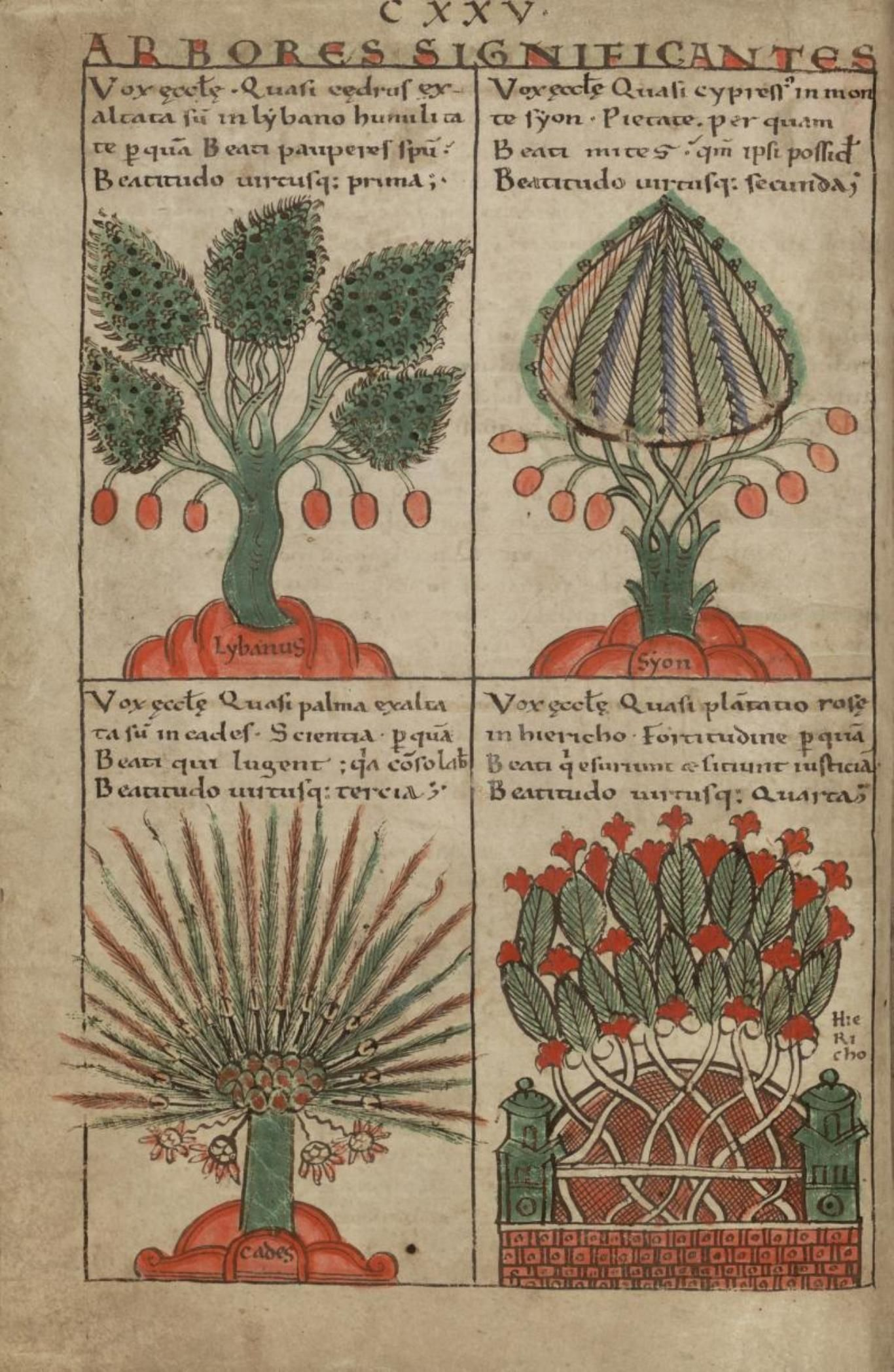 "The trees and their symbolic significance: cedar - 1st beatitude, cypress - 2nd beatitude, palm tree - 3rd beatitude, rose bush - 4th beatitude (Sermon on the Mount), in ""Liber Floridus"", creation: 1120, author: Lambert of Saint Omer, edition: 1121, copy scribed by the author himself, folio 139v, Universiteitsbibliotheek Gent"