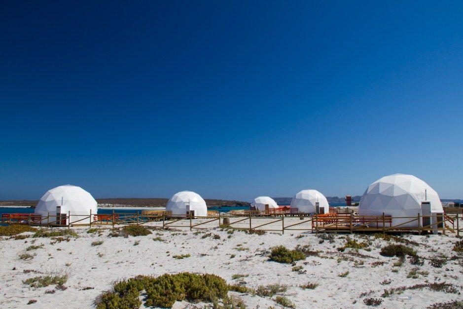 LaReserva Nacional Pingüino de Humboldtestá compuesta por la isla Damas y Choros, que pertenecen a la región de Coquimbo, y la isla Chañaral de Aceituno, que pertenece a la región de Atacama, a s…