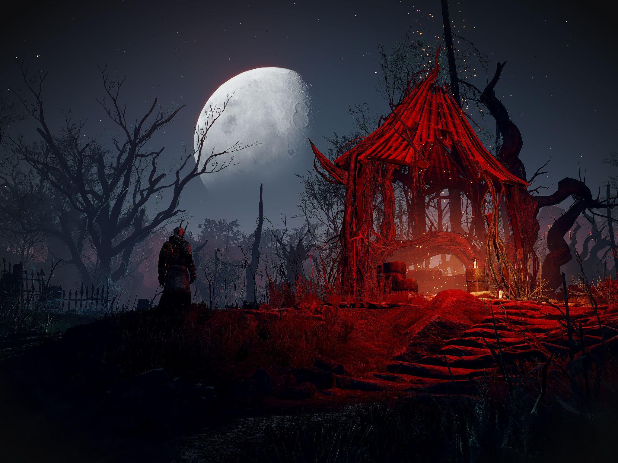 The Witcher 3 Wild Hunt The Witcher The Witcher 3 Witcher Art