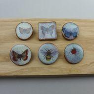 Bee, Butterfly or Ladybird Brooch