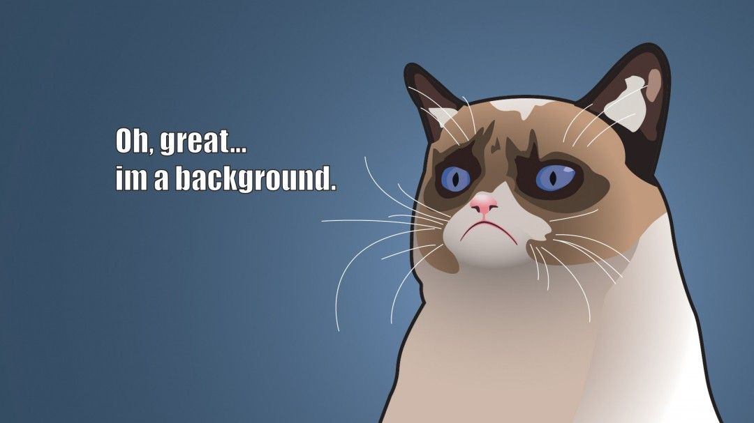 Grumpy Cat Desktop Background Funny Grumpy Cat Cartoon Background