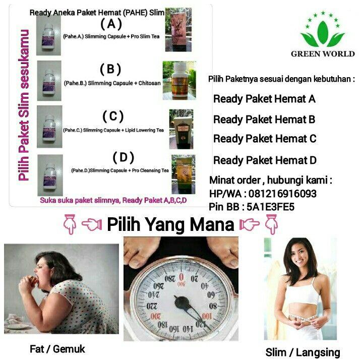 Green World Surabaya Paket Slim Glory Herbal Pinterest Surabaya