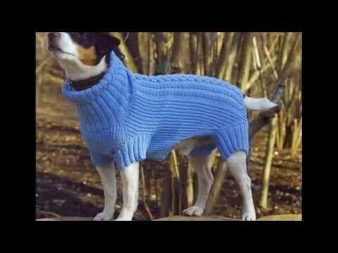 """Шерстяной свитер для собак """"Блеск"""" - YouTube"""