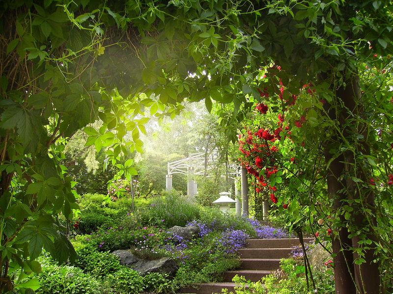 Heavenly Garden Heavenly Garden Favorite Places Spaces