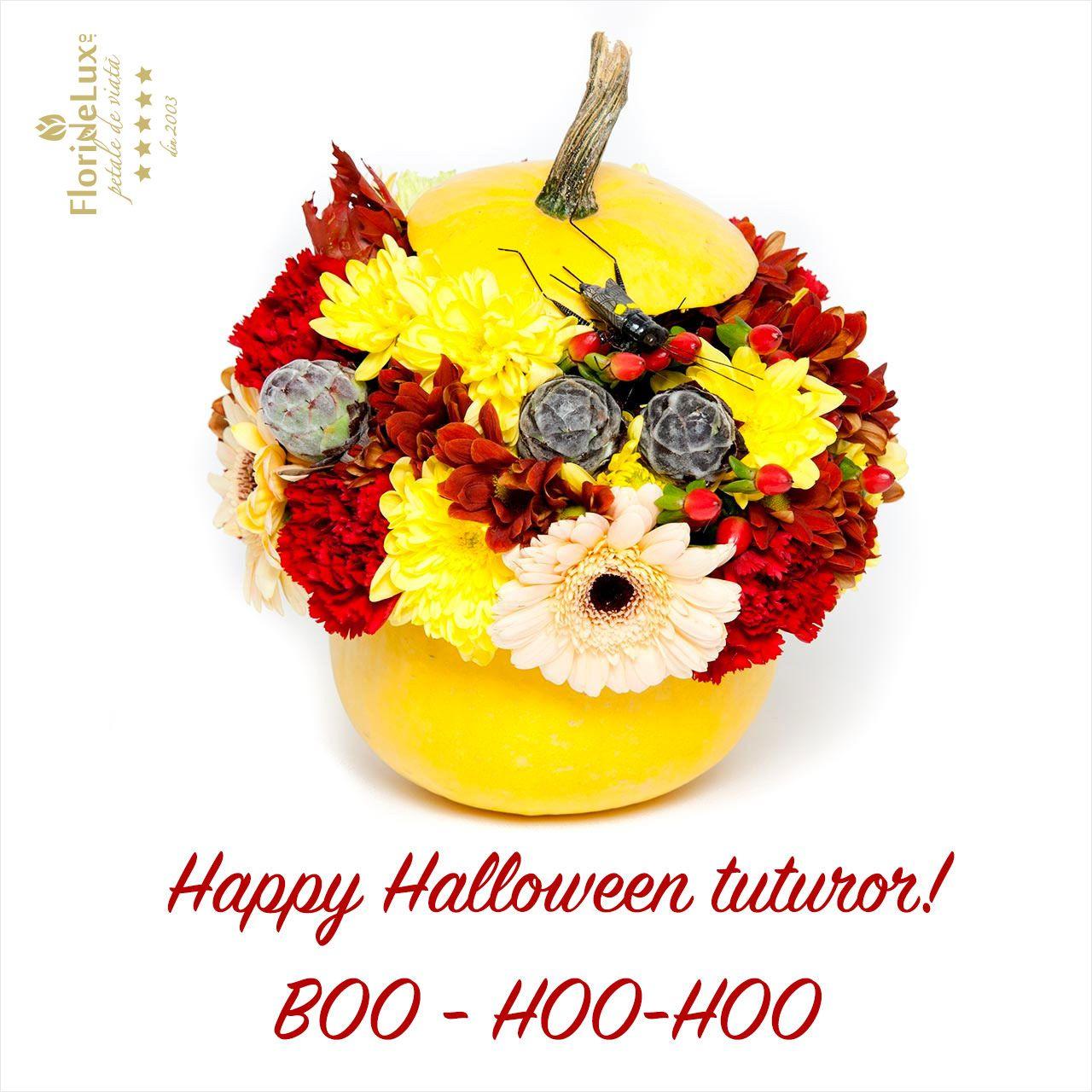 felicitare de Halloween, felicitare virtuala de Halloween  https://www.floridelux.ro/flori-pentru-ocazii/flori-cadouri-sarbatori/flori-halloween-30-octombrie/