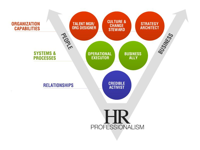 Hr Professionals In High Performing Firms Function As Credible Activists They Then Apply Th Human Resources Human Resource Management Learning And Development