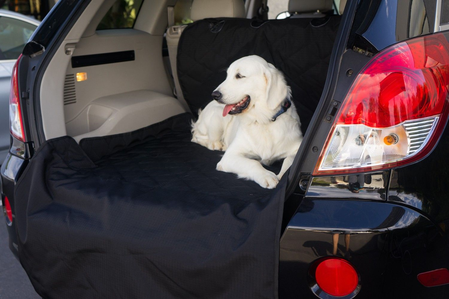 Cargo Cover Dogs, Dog bed, Large dogs
