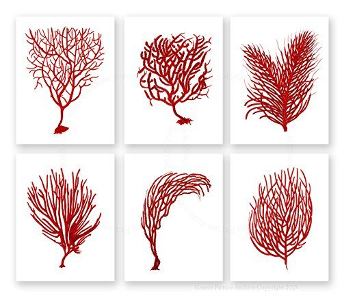 Coral Island Accent Wall: Red Sea Corals Beach Decor Set Of 6 Unframed Prints Bold