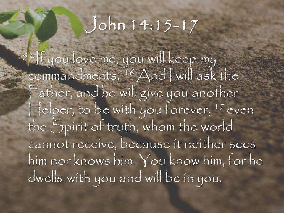 Image result for john 14:15-17