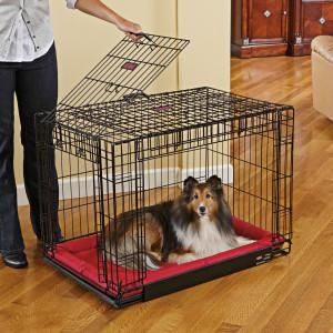 Kong At Home Space Saving Double Door Crate New Puppy Center Dog Petsmart Double Dog Crate Dog Crate Small Dog Crate