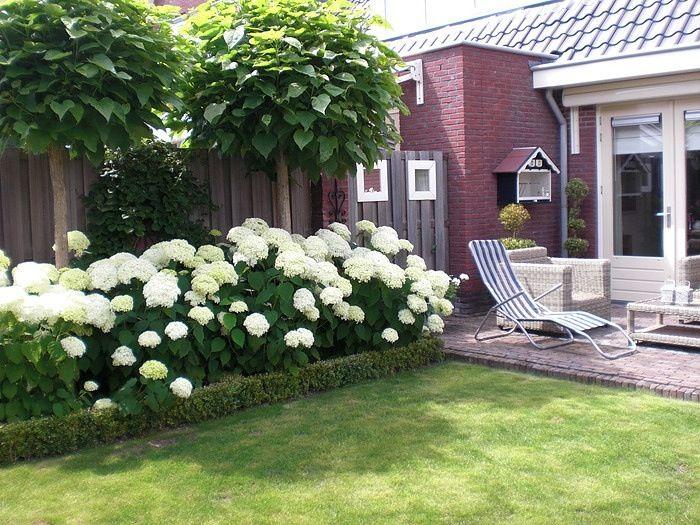 Bloemen voor bij terras zijkant huis tuin garten garten ideen
