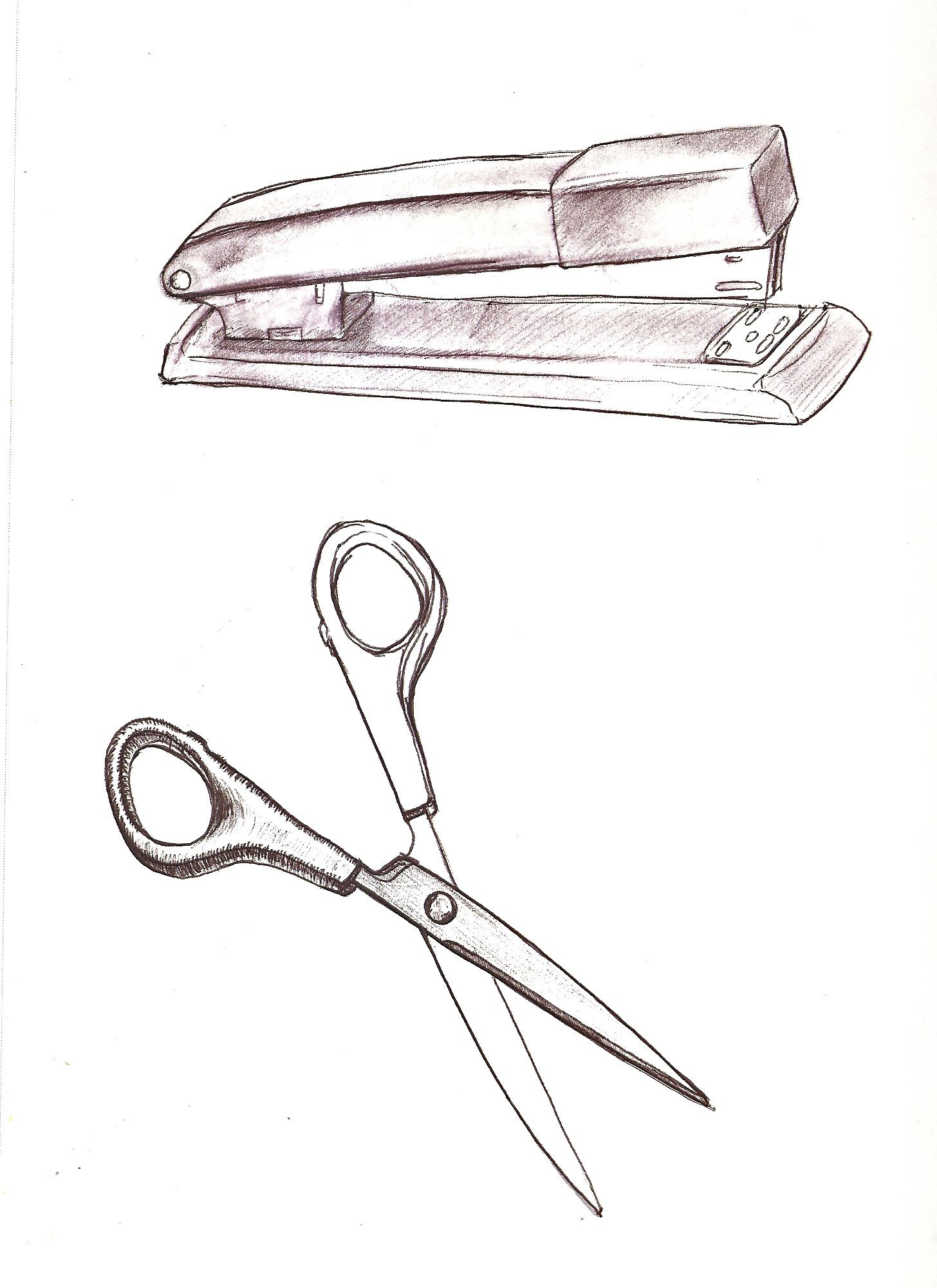 Stapler And Scissors Scissors Drawing Object Drawing Art Drawings Sketches Creative
