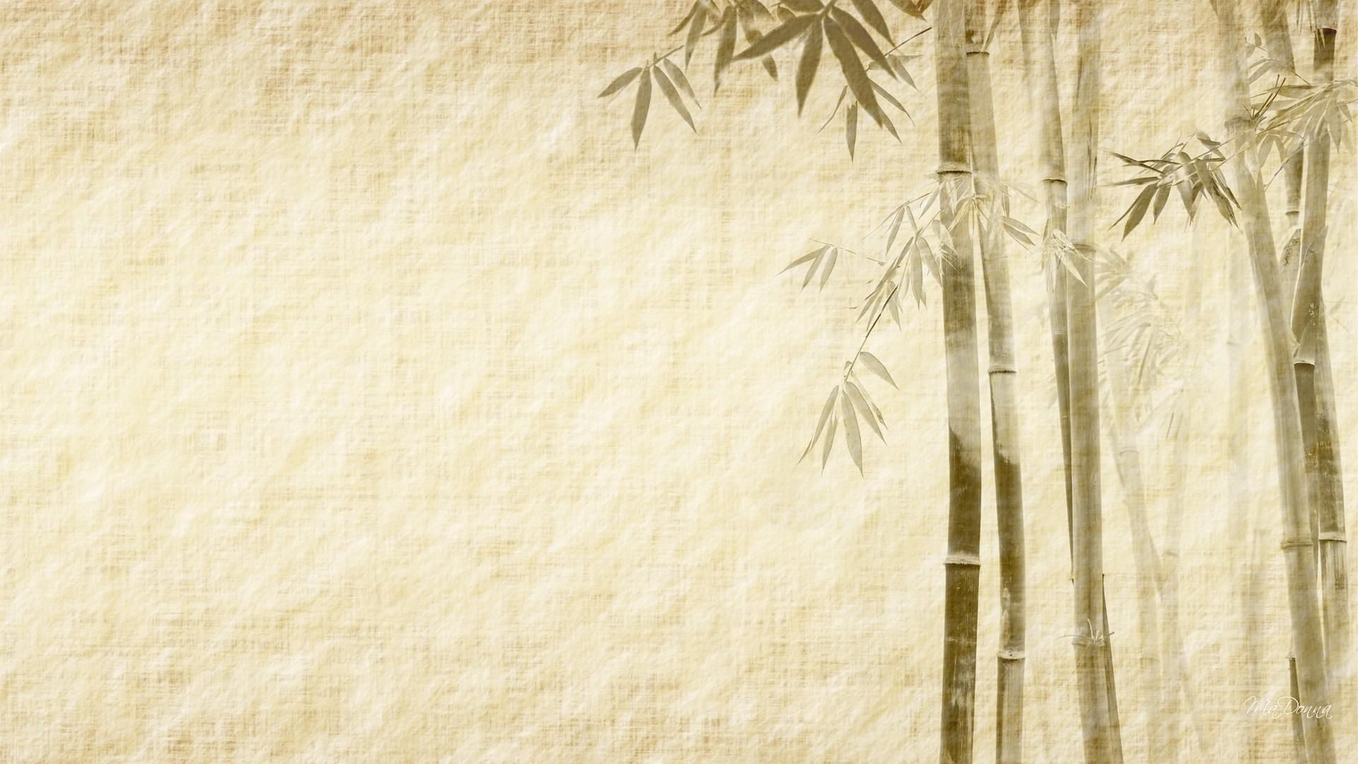 Desktop hd bamboo wallpapers elegant textures and works for Simple elegant wallpaper