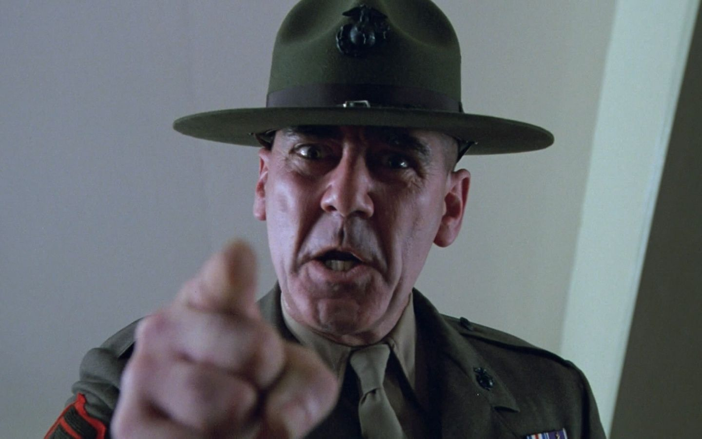 The R. Lee Ermey everyone knows!