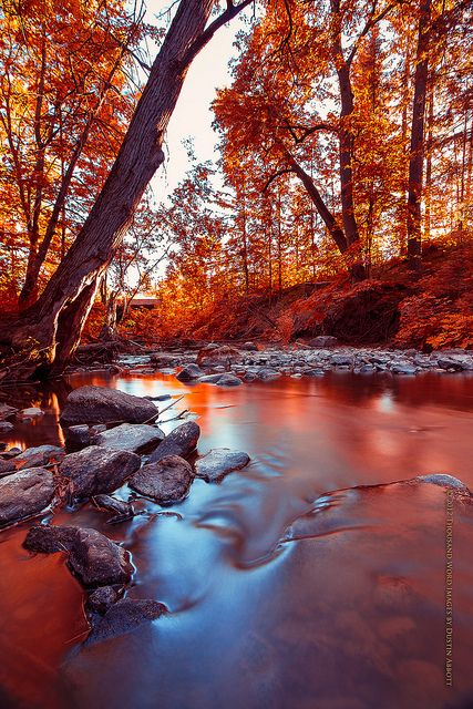 Flowing into Autumn by Thousand Word Images by Dustin Abbott on Flickr.