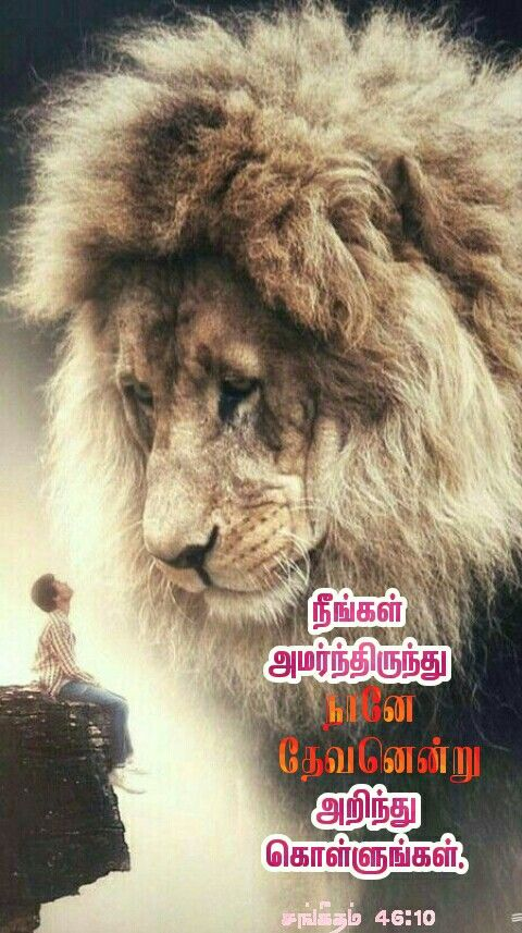 Pin by Tamil mani on Tamil Bible Verse Wallpapers in 2020 ...