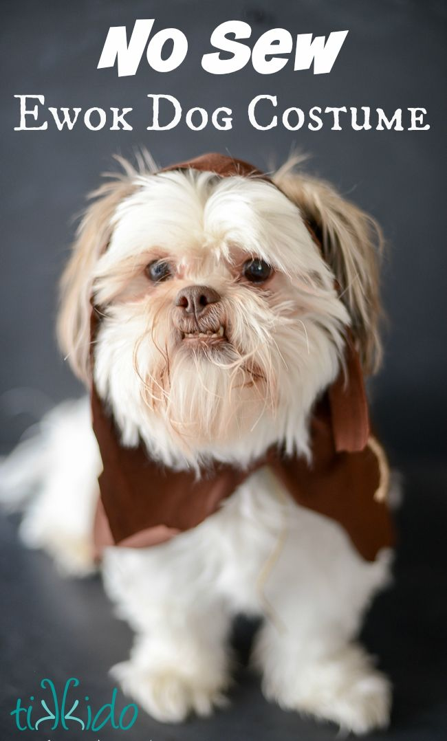 Easy Ewok No Sew Dog Costume Tutorial Diy Dog Costumes Dog