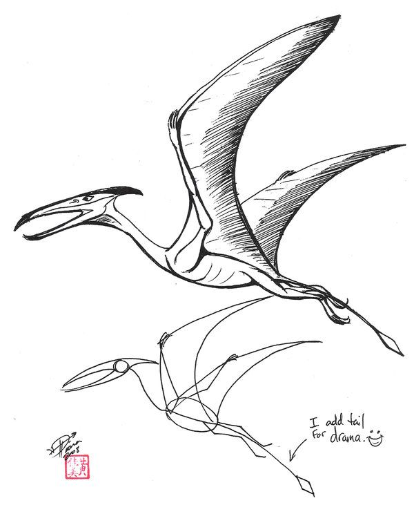 Dinosaur Pterodactyl Drawing Draw A Pterosaur By Diana In 2021 Dinosaur Drawing Dinosaur Sketch Dinosaur Art