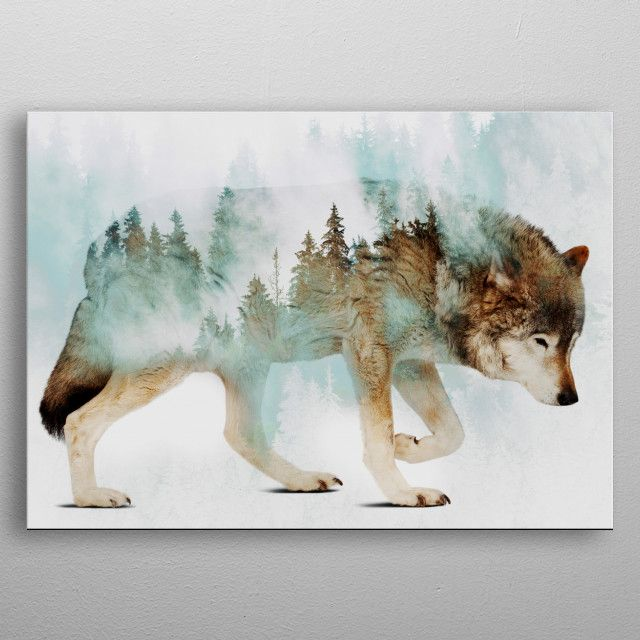 Wild Animal Displate Posters