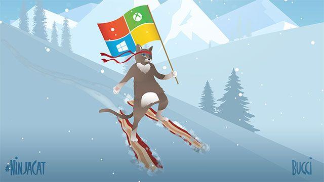 10 Cool Ninja Cat Wallpapers For Microsoft Windows 10