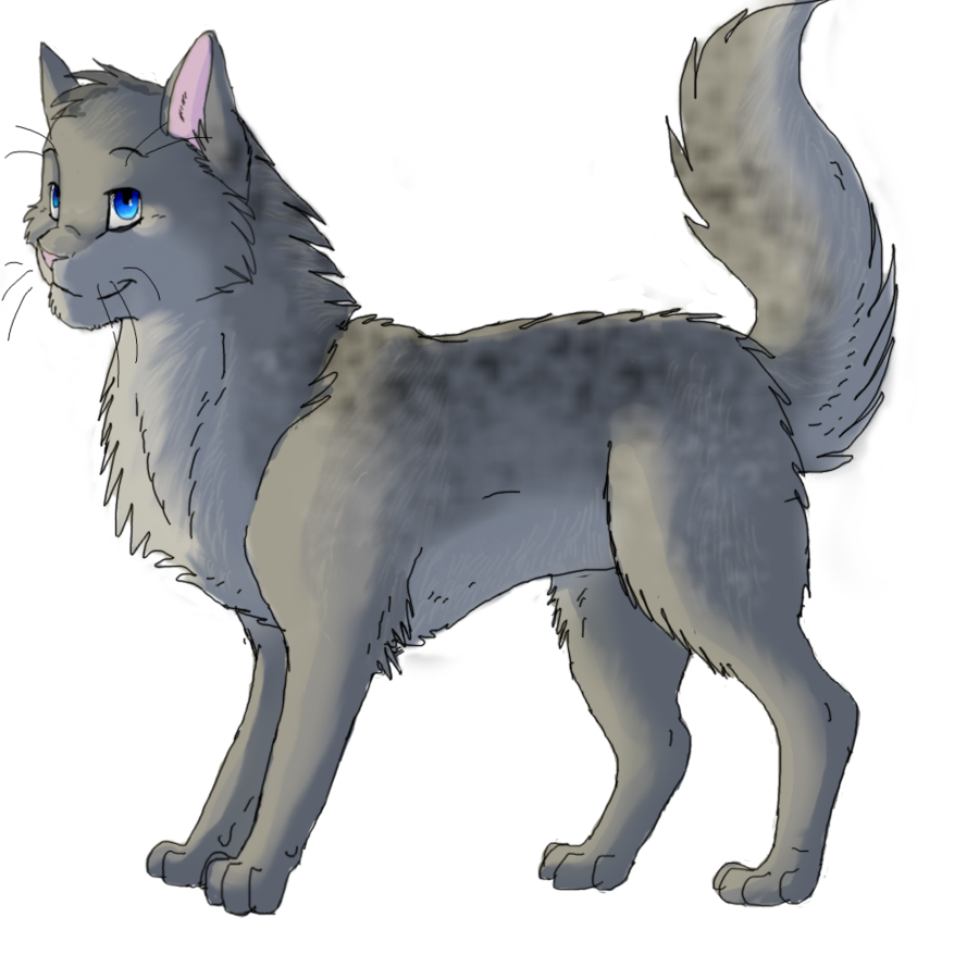 Ashfur Warrior cats Warrior cats series, Warrior cats