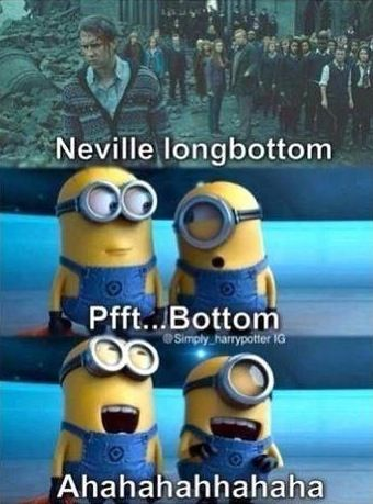 Harry Potter Funny, Despicable Me! Two of the best movies! and who doesn't love the minions! fuck you and fuck minions.