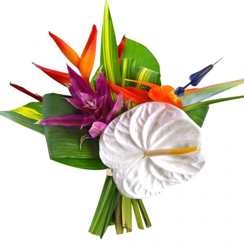 bouquet exo jungle bricolage et diy pinterest oiseau du paradis paradis et bouquet. Black Bedroom Furniture Sets. Home Design Ideas