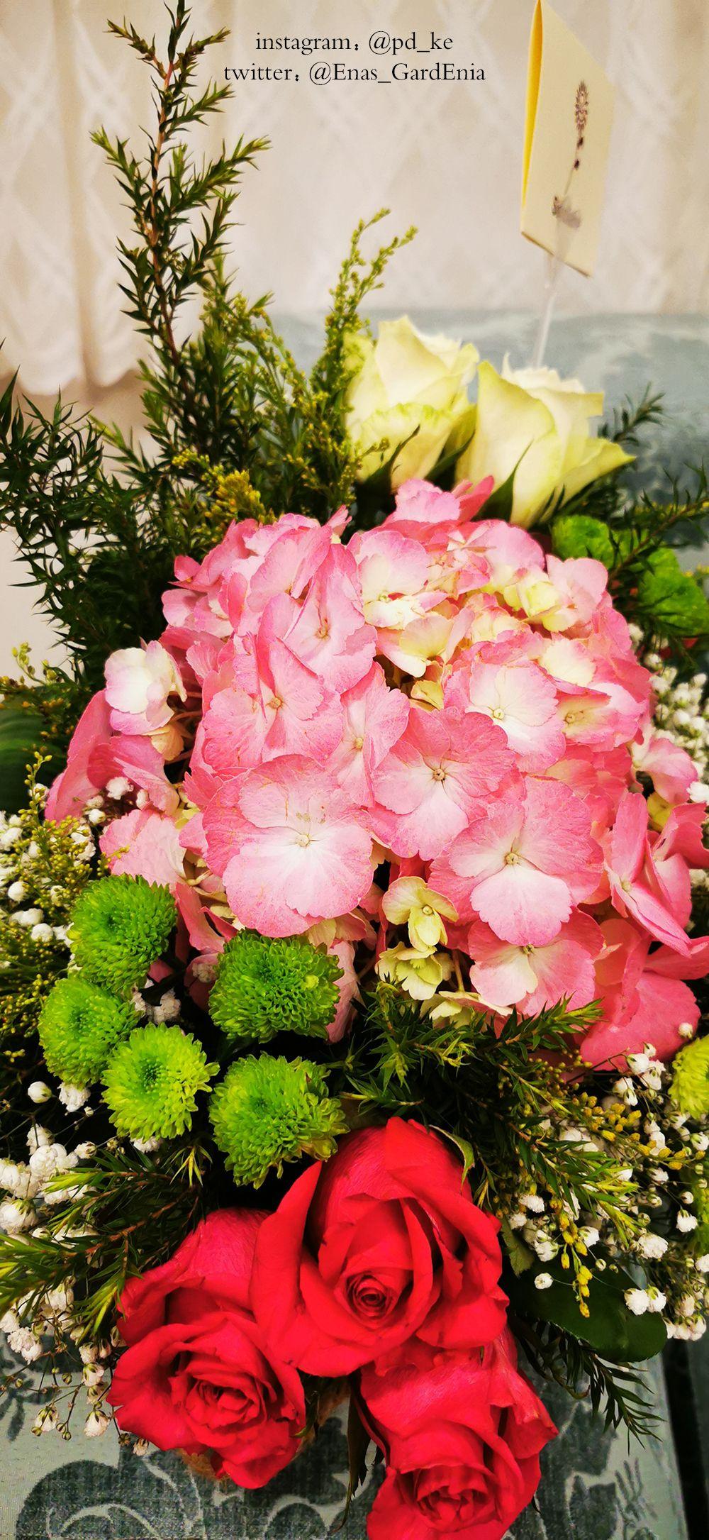 Snapchat Enasart Www Instagram Com Pd Ke تصويري ايناس الغاردينيا تصوير جوال تصوير السعودية جدة بني مالك الجنوب جنوب In 2020 Floral Wreath Floral Wreaths