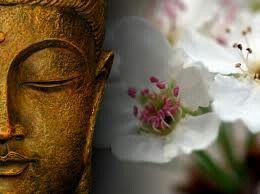 Zen#buddha