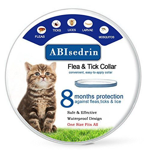 Dog Flea Collars Flea Tick Collar For Dogs Cats Prevents Treats Fleas Ticks Lice Pests For 8 Months Hypoallergenic S Kitten Collars Fleas Flea Treatment