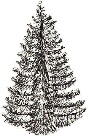 How To Draw A Christmas Tree Draw Step By Step Christmas Tree Drawing Realistic Christmas Trees Pencil Drawings