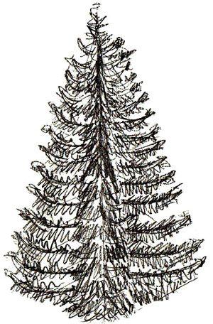 Realistic Christmas Tree Drawing : realistic, christmas, drawing, Christmas, Drawing,, Realistic, Trees,, Drawing