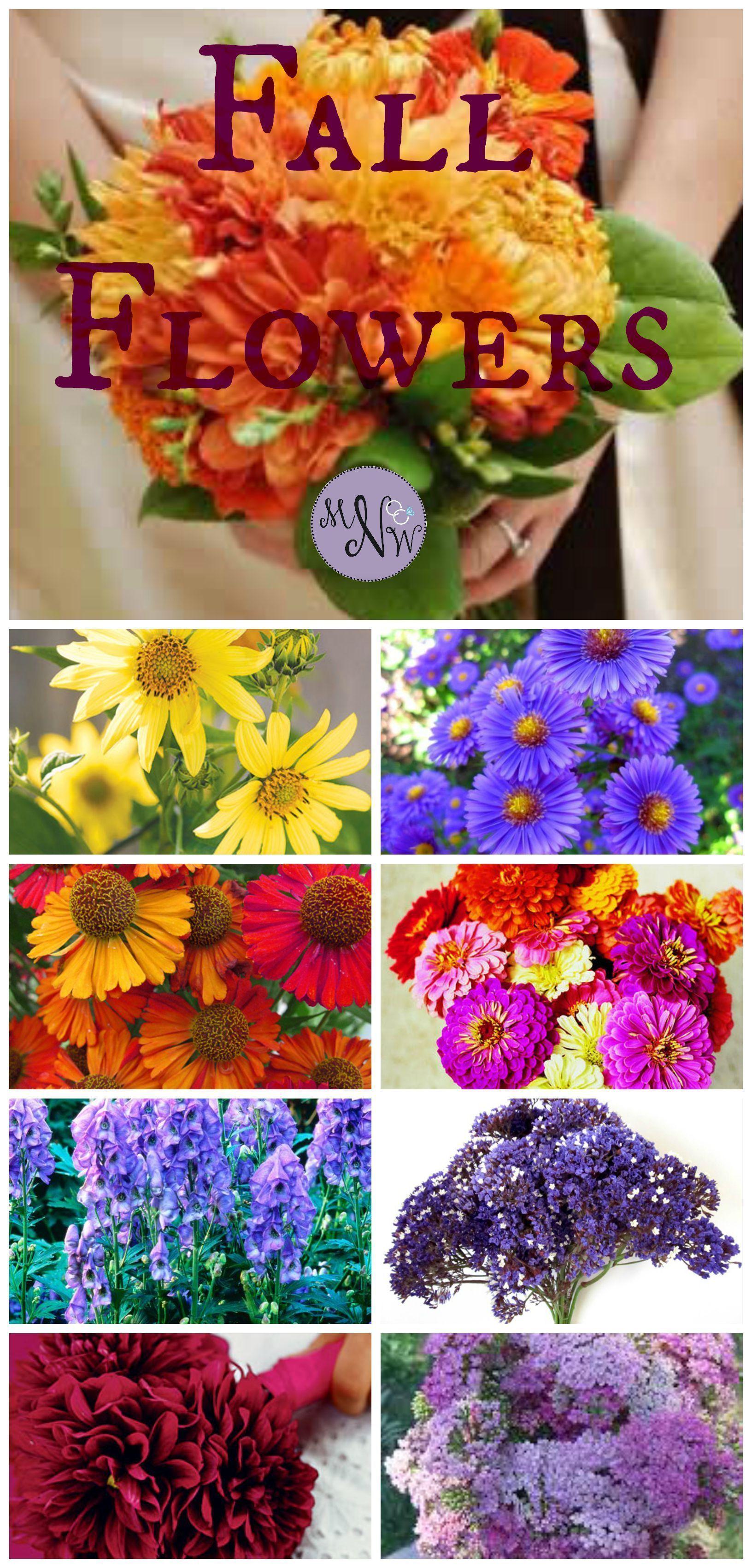 Pin By Wedding Flowers Spring On Wedding Flowers 2018 Pinterest