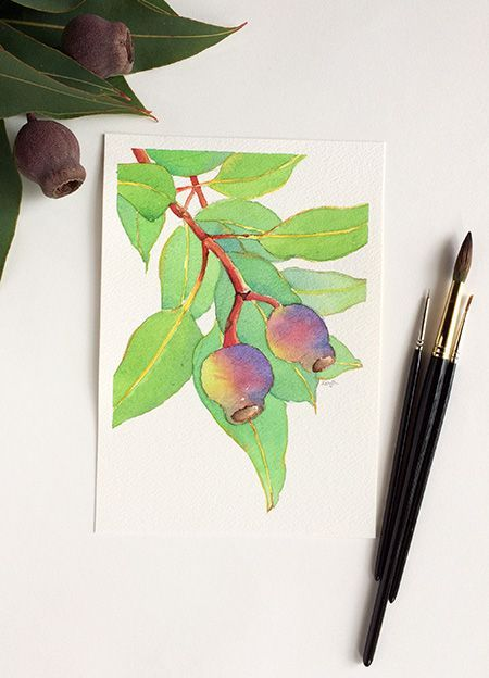 Gumnuts Original Watercolour Painting On Paper A5 Flora Botanical