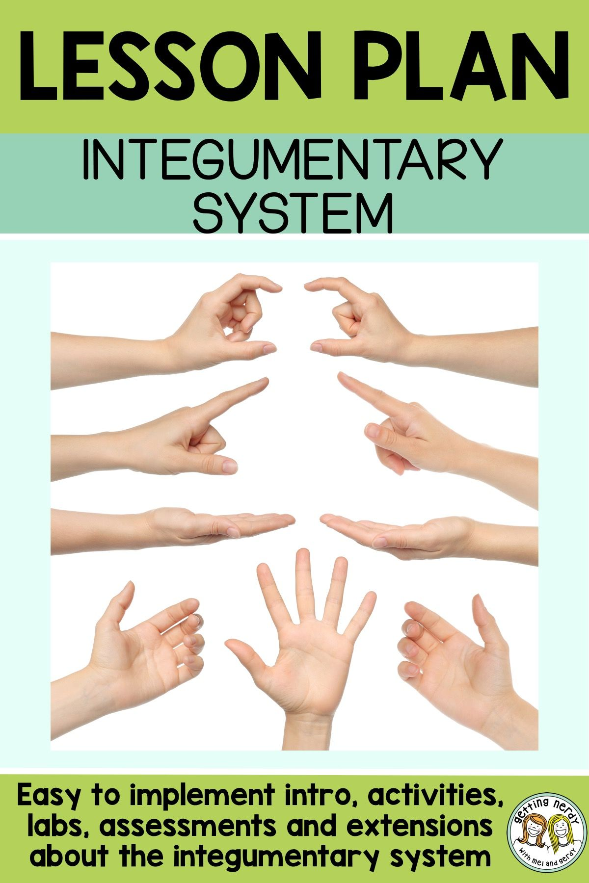 This a great lesson plan and lab for teaching about the integumentary system  and touch receptor distribution #gettingnerdyscience #sciencelessonplan