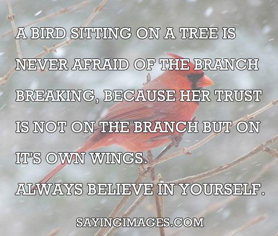 Always Believe In Yourself · Yourself QuotesReading QuotesInspirational ...