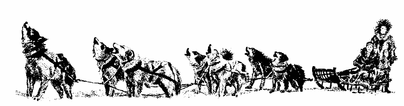 Iditarod Coloring Pages