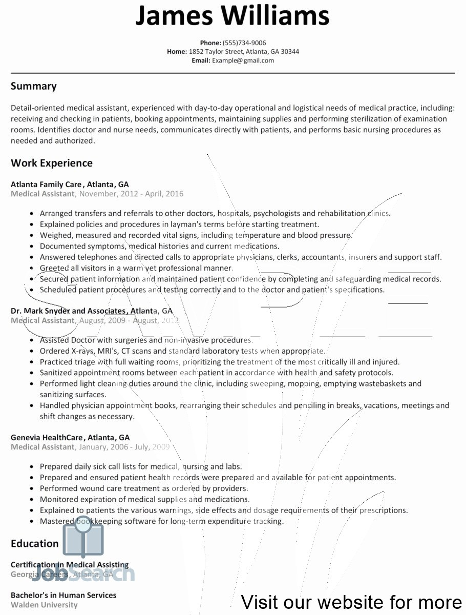 Great Executive Resume Templates In 2021 Resume Template Free Resume Design Template Resume Template