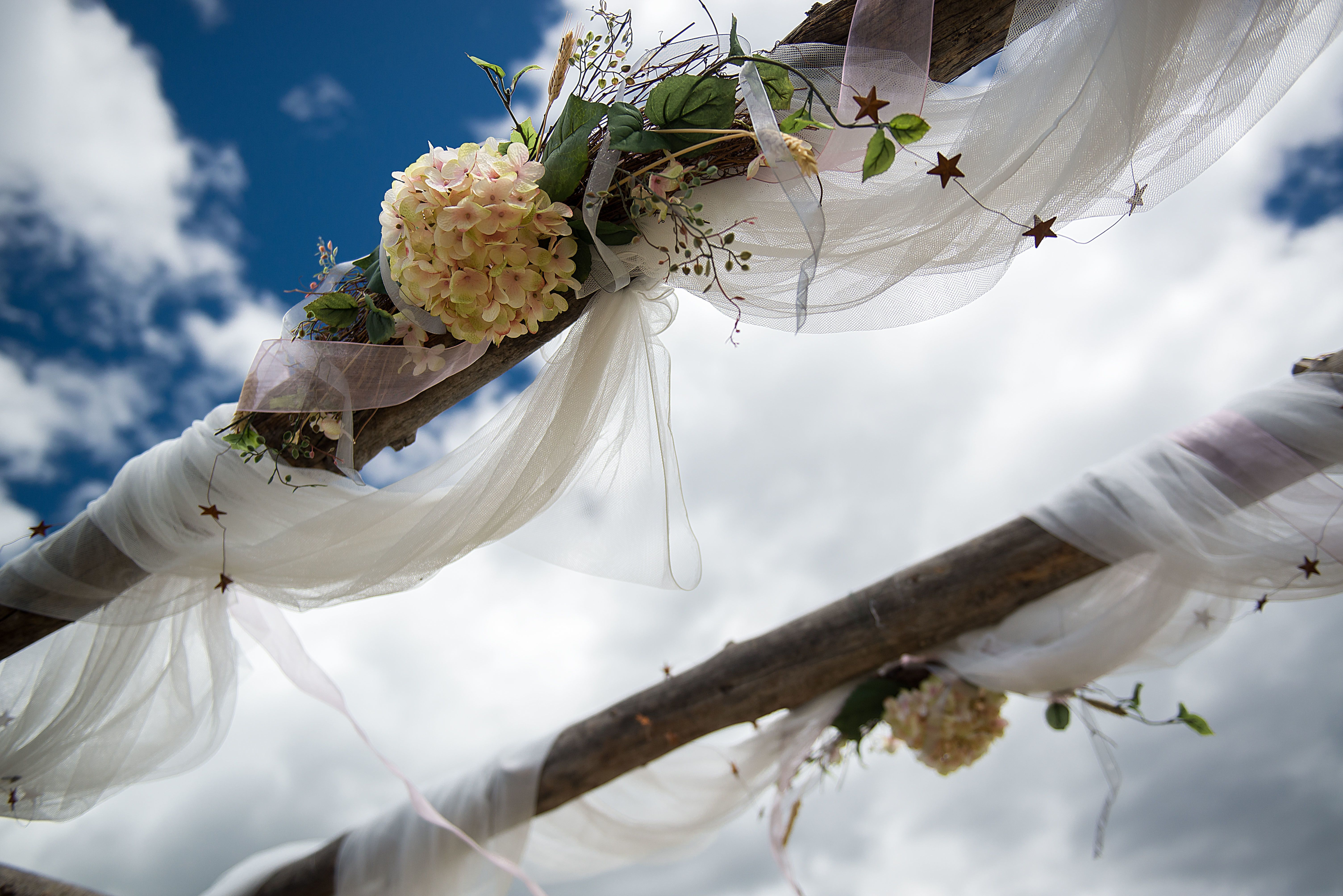 Hydrangea and vine arbor decoration ranch wedding