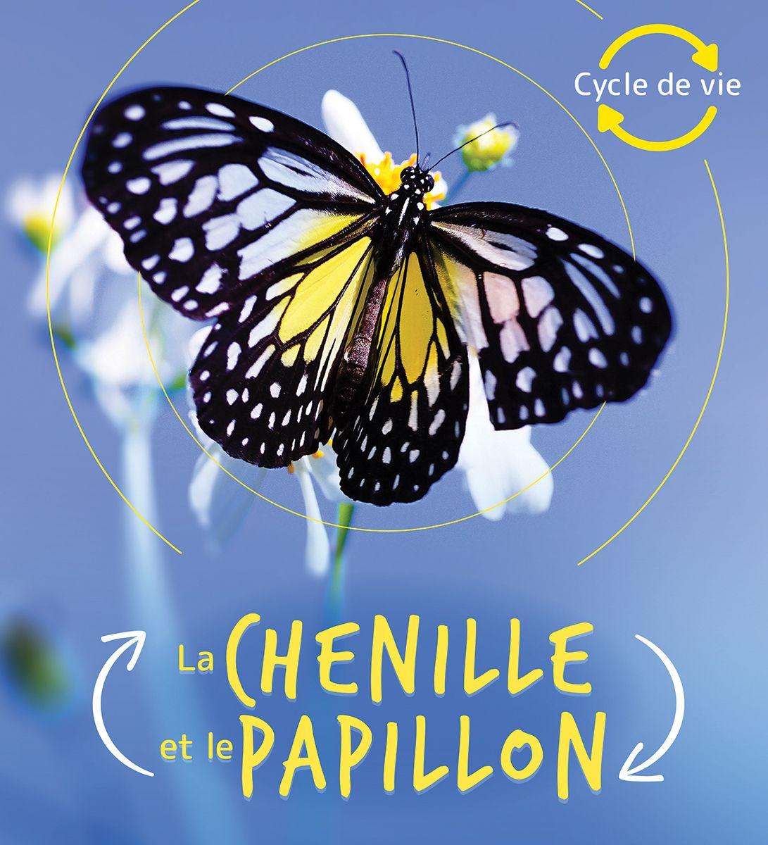Cycle de vie La chenille et le papillon in 2020