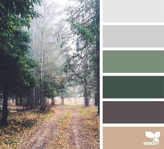 My Favorite Autumn Color Palettes #autumncolorpalette