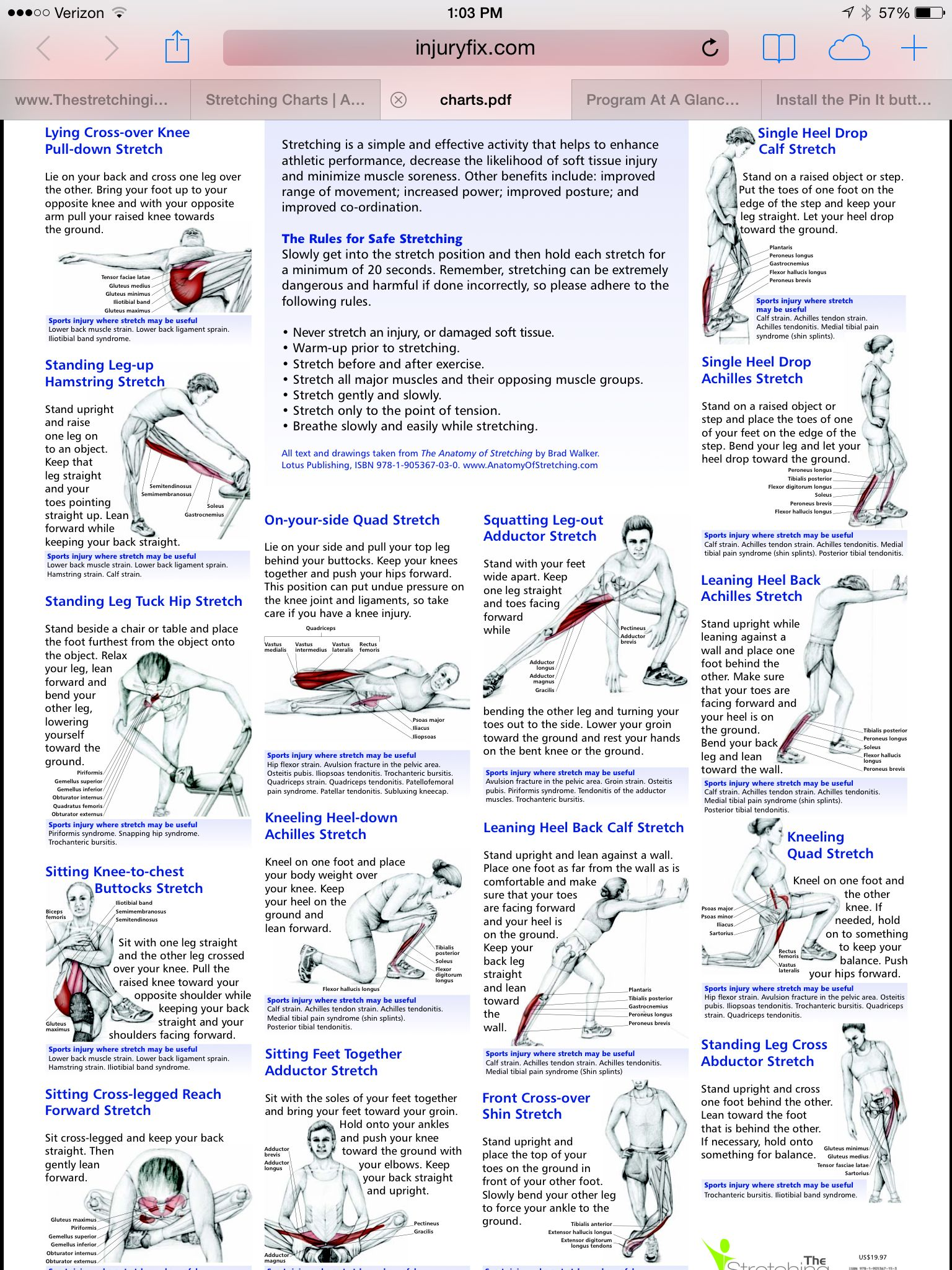 lower body http injuryfix com resources charts pdf running