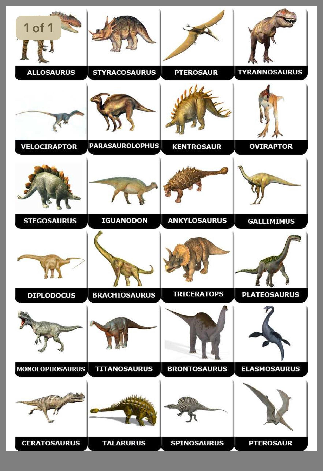 Pin By Eishacullen On Dinosour Dinosaur Posters Dinosaur Pictures Dinosaurs Names And Pictures Vernacular names edit wikidata 'category:dinosaurs' linked to current category edit wikidata 'dinosaur' main topic of 'category:dinosaurs'. dinosaur posters dinosaur pictures