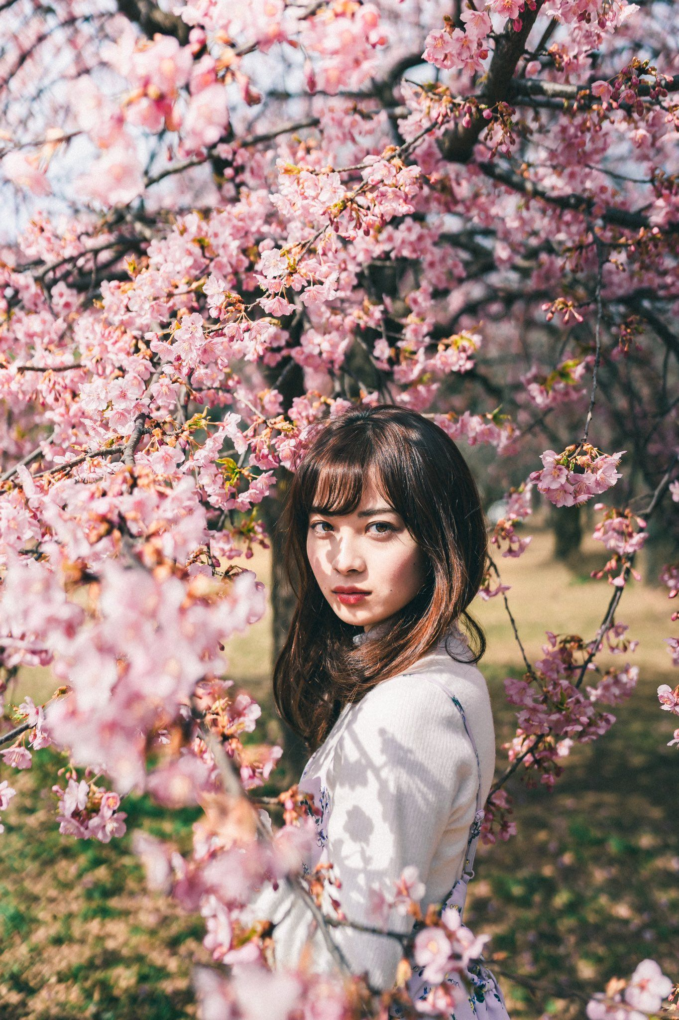Ryo Ogawa On Twitter Spring Photography Spring Portraits Spring Photoshoot