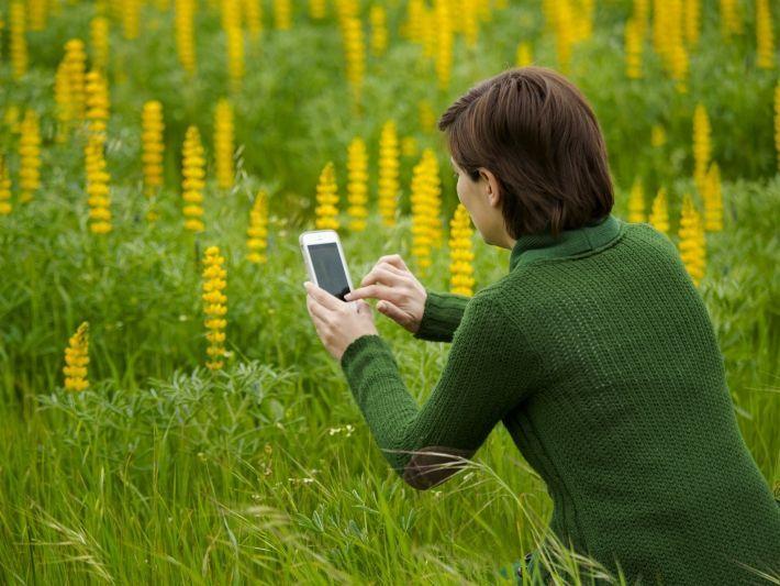 Best Apps for Gardening | Flower garden design, Edible ...
