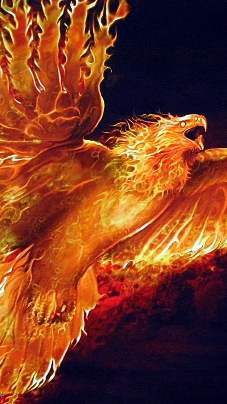 1080x1920 Awesome Fire Phoenix iphone 6 plus Wallpaper HD
