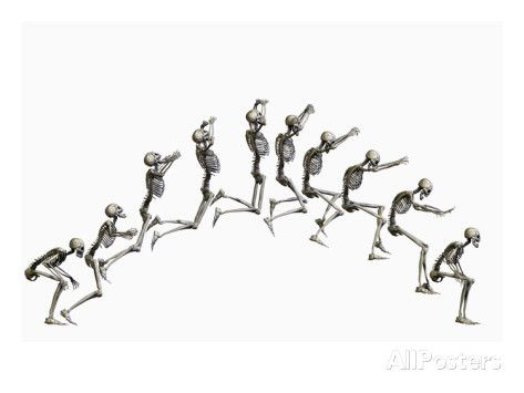 sequence illustrating a human skeleton jumping | human skeleton, Skeleton