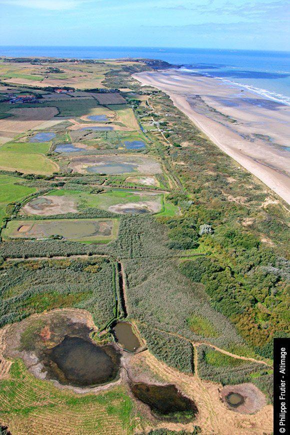 Dunes de la baie de wissant frances o 39 connor cap d 39 agde and opals - Office du tourisme wissant ...